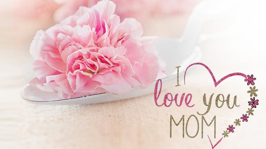 母の日の意味と由来とは<br />カーネーション以外に適した花も紹介