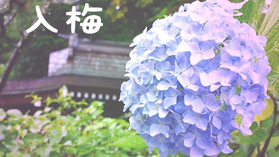 入梅の意味・由来についての記事イメージ(アイキャッチ用)